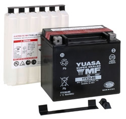 Yuasa Maintenance Free (AGM) Batteries YTX20-BS