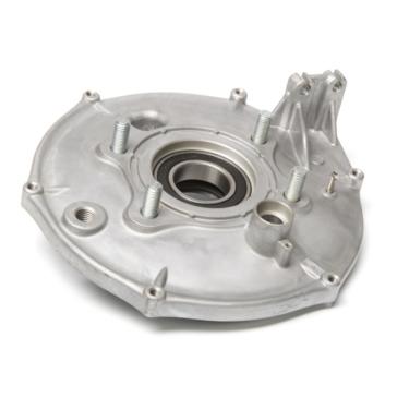 Kimpex TRX 300 Rear Brake Backing Plate