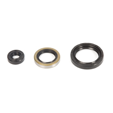 VertexWinderosa Oil Seal Sets Polaris - 059406
