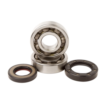 HOT RODS Crankshaft Bearing Kit Honda - ATV