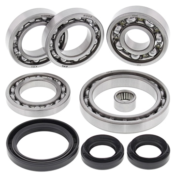 All Balls Differencial Bearing Repair Kit CFMoto