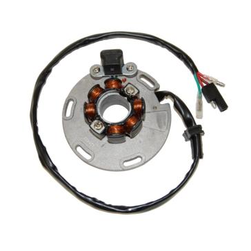 Suzuki ELECTROSPORT Stator