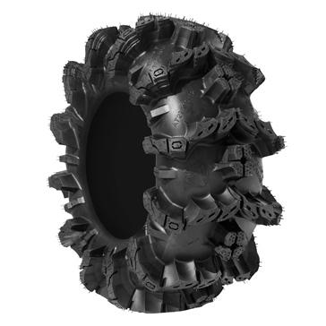 Interco Black Mamba Tire
