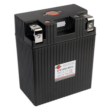 Batteries LFX SHORAI LFX14A5-BS12