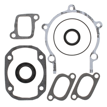 Winderosa Professional Complete Gasket Sets with Oil Seals Redcat, Ski-doo - 09-711195