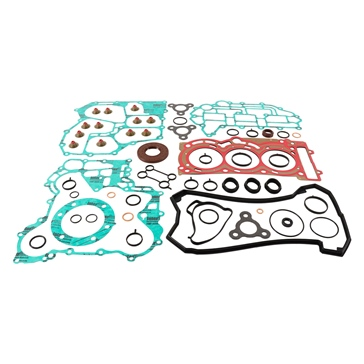 VertexWinderosa Professional Complete Gasket Sets with Oil Seals Fits Ski-doo - 304796