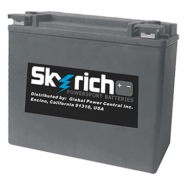Skyrich Batterie au lithium-ion super performance HJVT-3-FPP