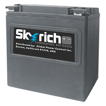 Skyrich Battery Lithium Ion Super Performance HJVT-2-FPP